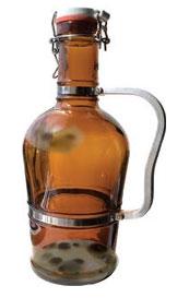Terrariums terrorize craft beer lovers: Clean your jugs!