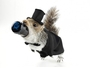 BrewDog's End of History, packaged in taxidermy, dressed for prom