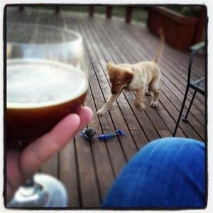 Beer & Earl